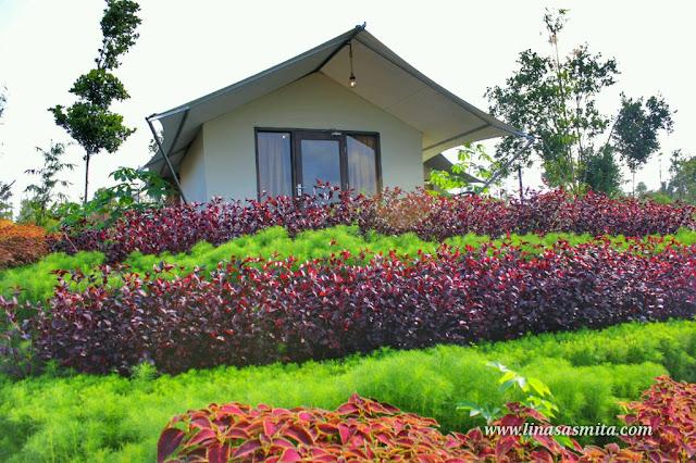 Desa Wisata Ekang Bintan