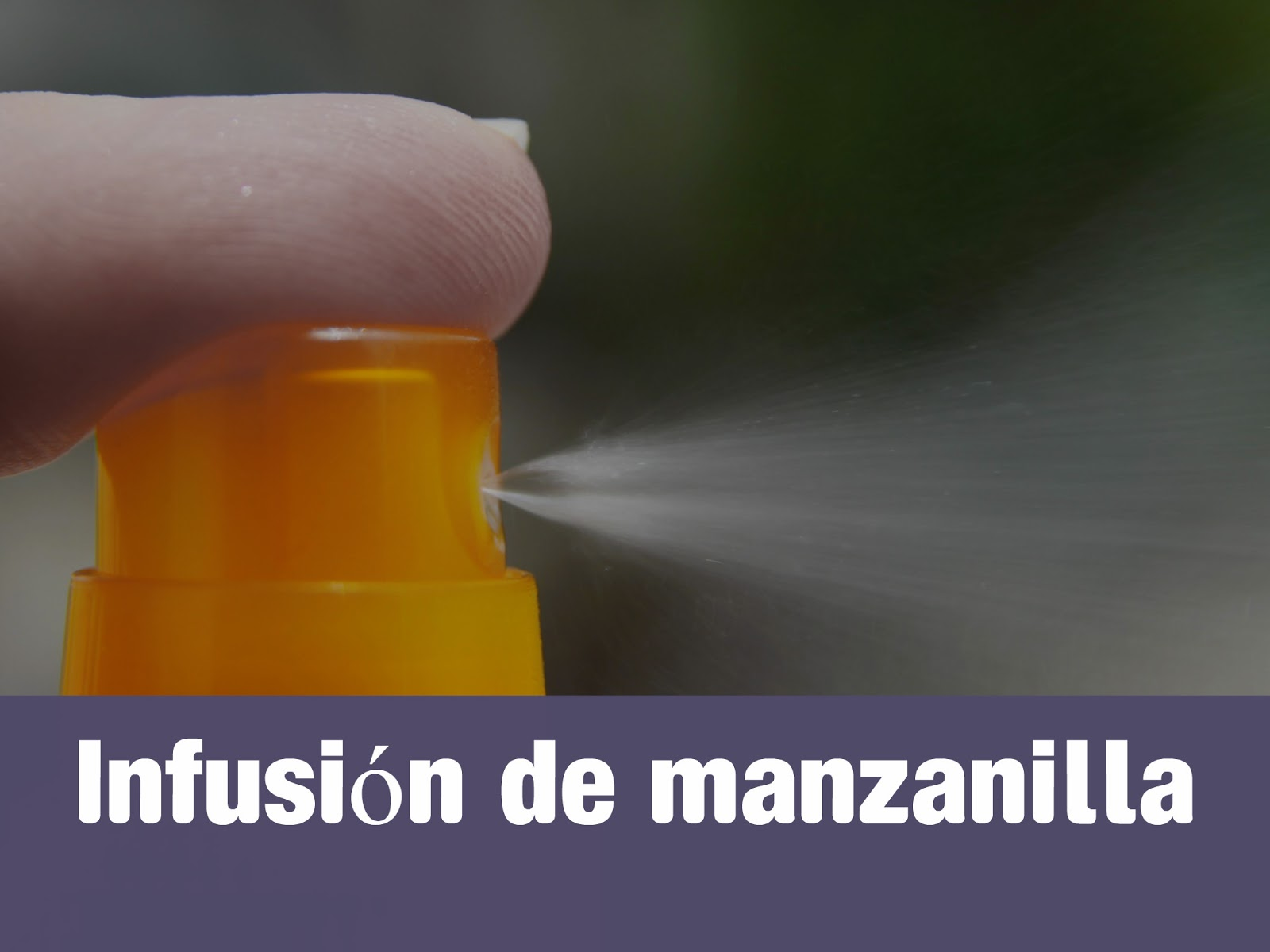 manzanilla-mosquitos