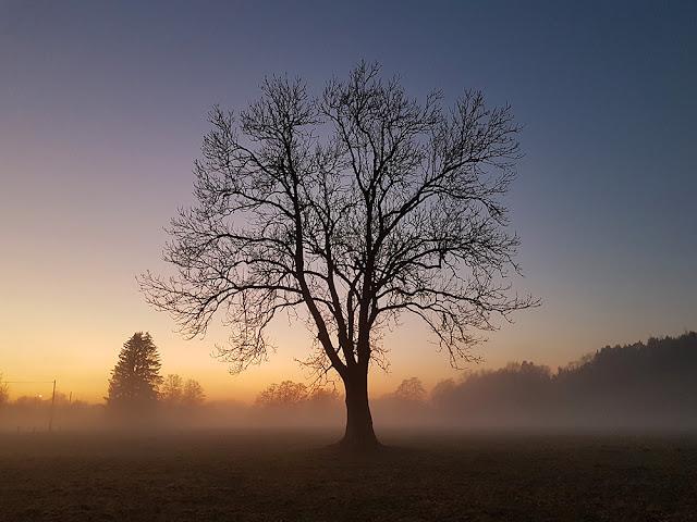 Ben Heine Photographie, Nature, Rochefort, Belgique