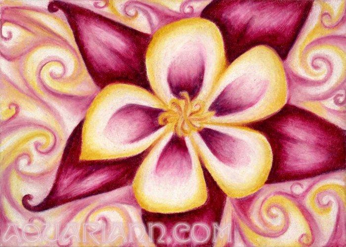 Columbine Flower Drawing