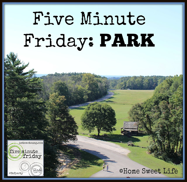 five minute friday writing prompt, park, family time