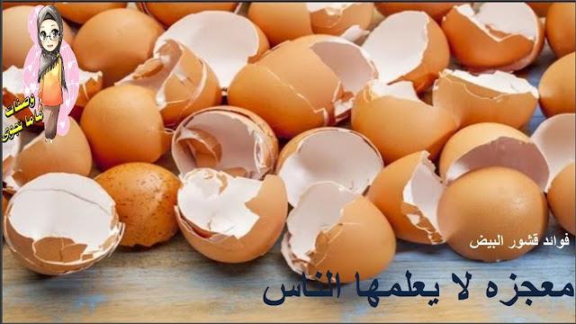 معجزة فوائد قشر البيض أتحداك أن ترمي قشور البيض بعد معرفة فوائدها- لاترمى قشر البيض
