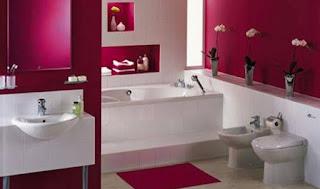 techno-conseil-bain-douche-framboise