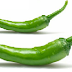 Green Chili meaning in hindi, Spanish, tamil, telugu, malayalam, urdu, kannada name, gujarati, in marathi, indian name, marathi, tamil, english, other names called as, translation