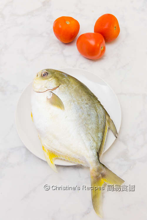 Golden Pomfret an Tomatoes