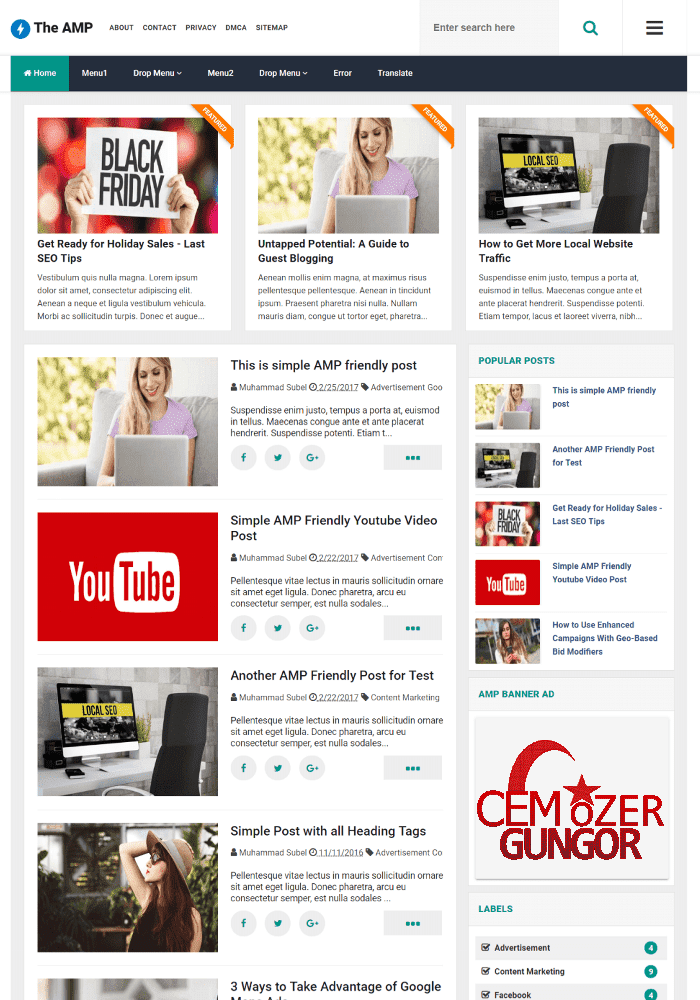 The AMP Blogger Seo ve Adsense Uyumlu AMP Tema