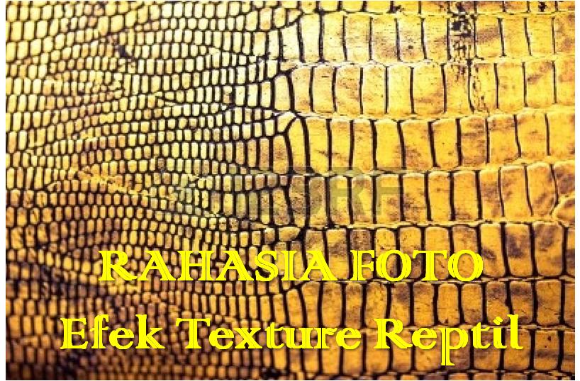 Rahasia Foto Efek Texture Reptil