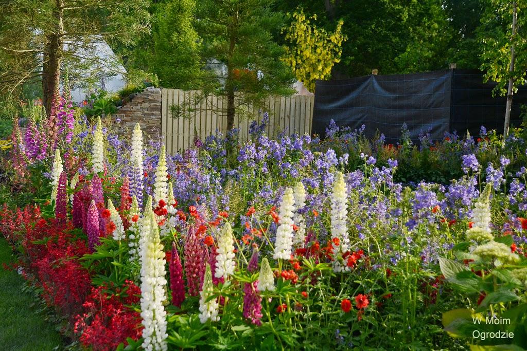 ogród naturalistyczny w stylu angielskim
