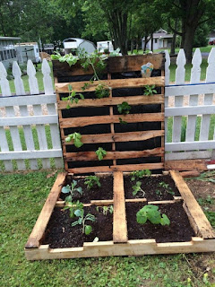 gardening ideas using pallets