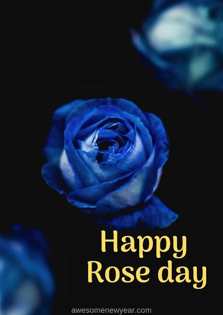 Unique Rose Day Images