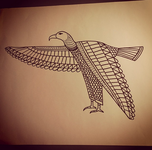 egyptian vulture drawing - photo #34