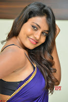 Actress Priya in Blue Saree and Sleevelss Choli at Javed Habib Salon launch ~  Exclusive Galleries 023.jpg