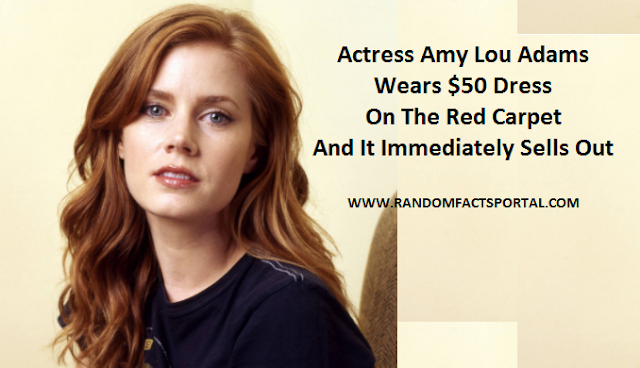 Actress Amy Lou Adams Wears $50 Dress On The Red Carpet And It Immediately Sells Out