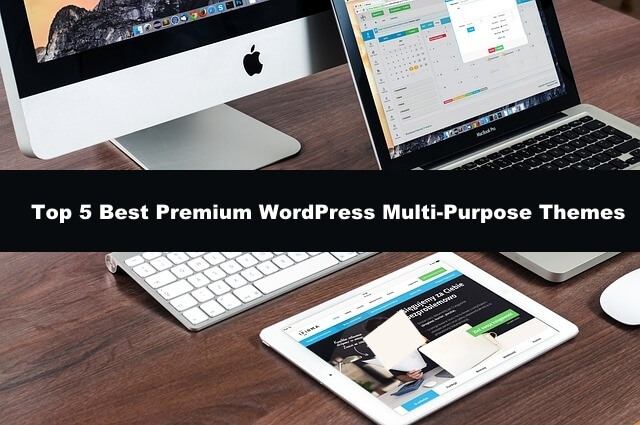 best WordPress Theme for you