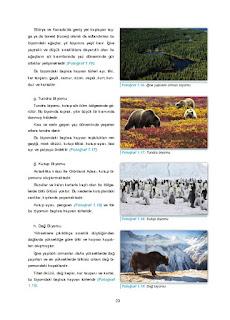 11. Sınıf Coğrafya Ders Kitabı Cevapları Gün Yayınları Sayfa 23
