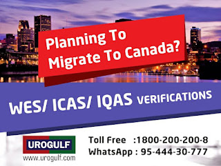 Wes services from urogulf