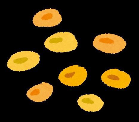 イラスト 豆