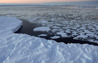 Arctic sea ice hangs on through the summer (Credit: conservationminnesota.org) Click to Enlarge.