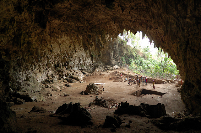 More on Likely ancestor of mystery 'hobbit' found