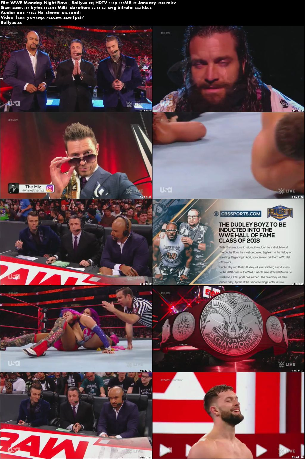 WWE Monday Night Raw HDTV 480p 500MB 29 January 2018 Download