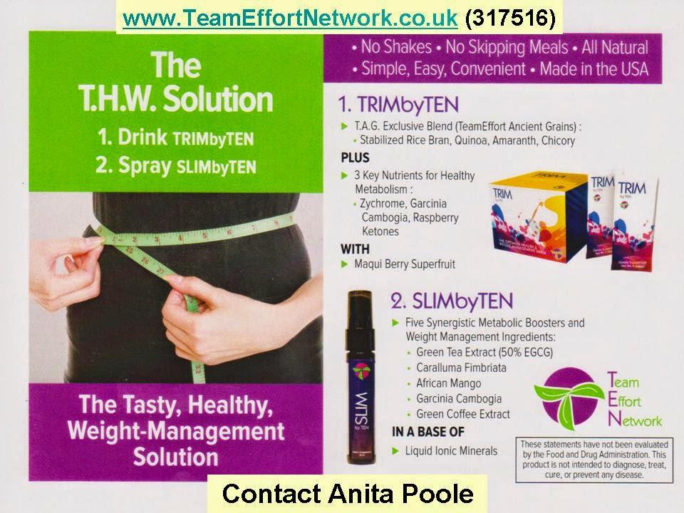 Team Effort Network - Anita Poole - Independent