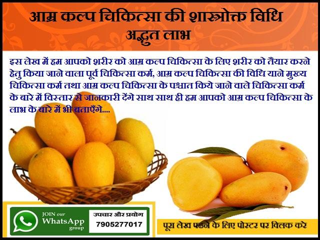 आम्र कल्प चिकित्सा की शास्त्रोक्त विधि तथा उसके अद्भुत लाभ