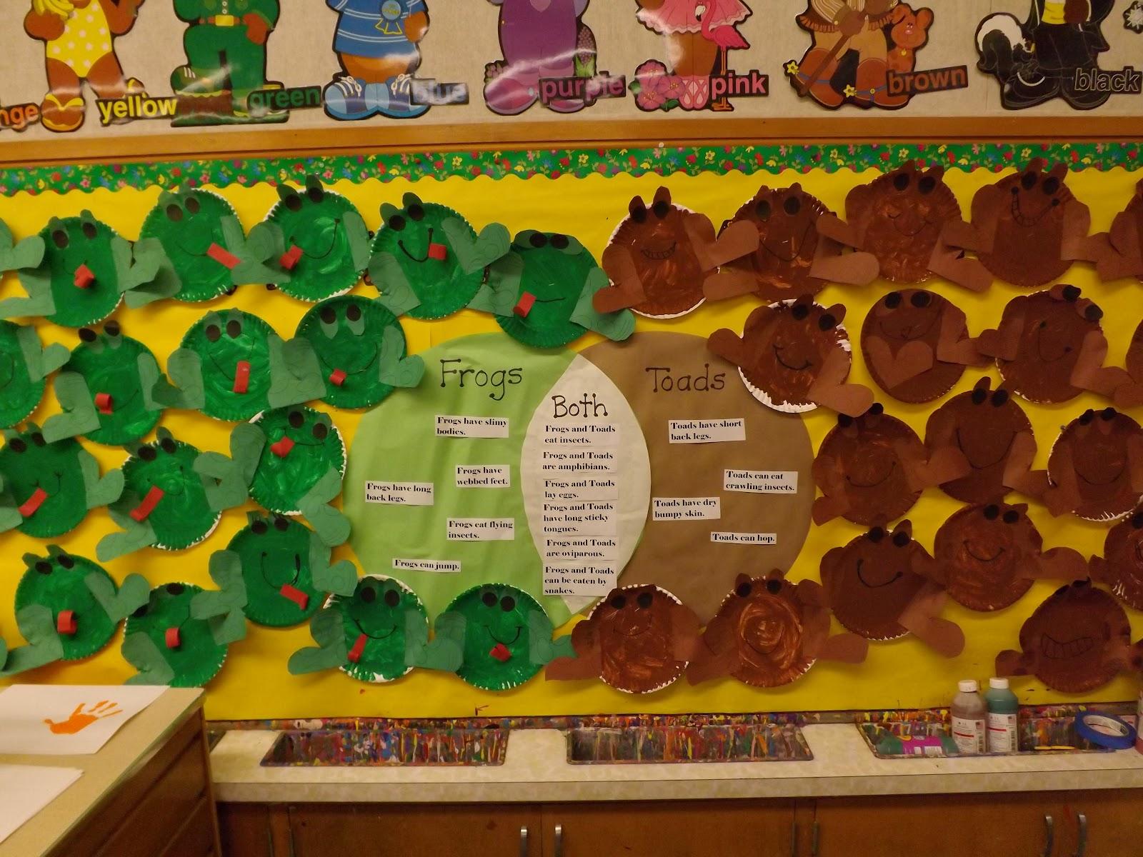 Mrs Vento S Kindergarten Amphibians And Reptiles