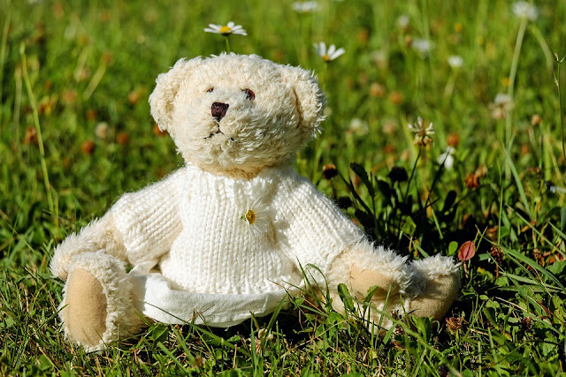 Teddy Bear Day Quotes 2017 in Hindi