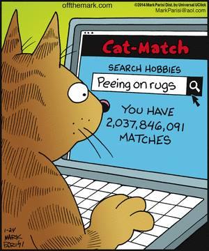 cat match