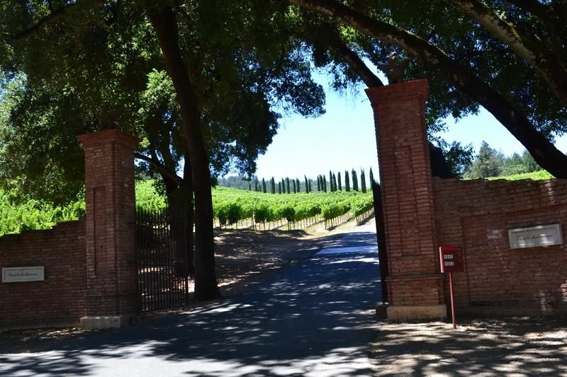 Napa Valley, vignoble, vin, californie, calistoga