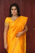 actress Poorna glamorous photos gallery-thumbnail-6