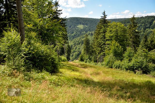 Przełęcz Jugowska w Górach Sowich na blogu podróżniczym. Szlaki, wieże widokowe i atrakcje turystyczne