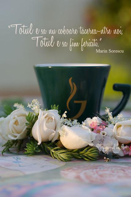 citat versuri Marin Sorescu tacere fericire