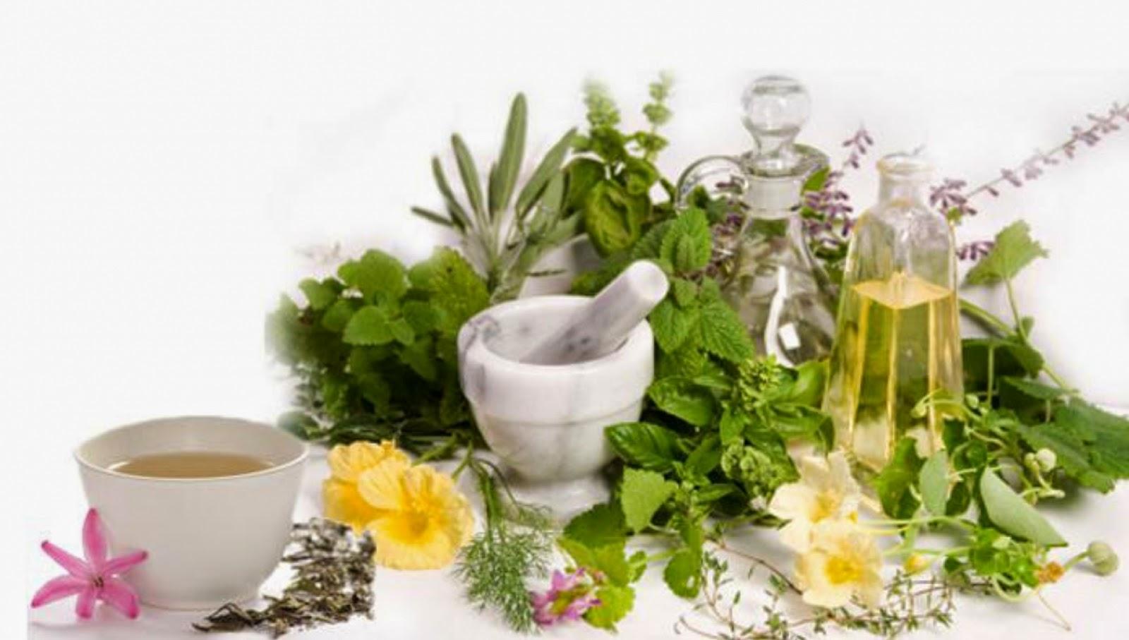 Sử dụng các loại tinh dầu thiên nhiên sẽ giúp cho tóc nhanh dài và dày