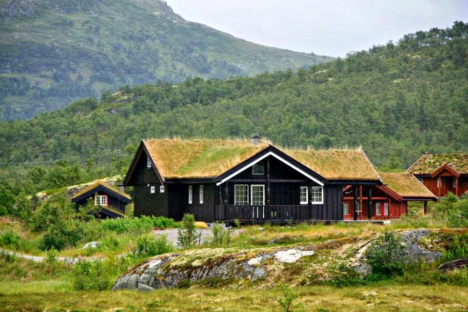 Casas - y tejados - típicos del centro de Noruega.