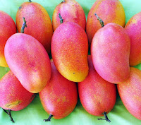 The Amazing Health Benefits of Mango Podang For Body - Healthy T1ps