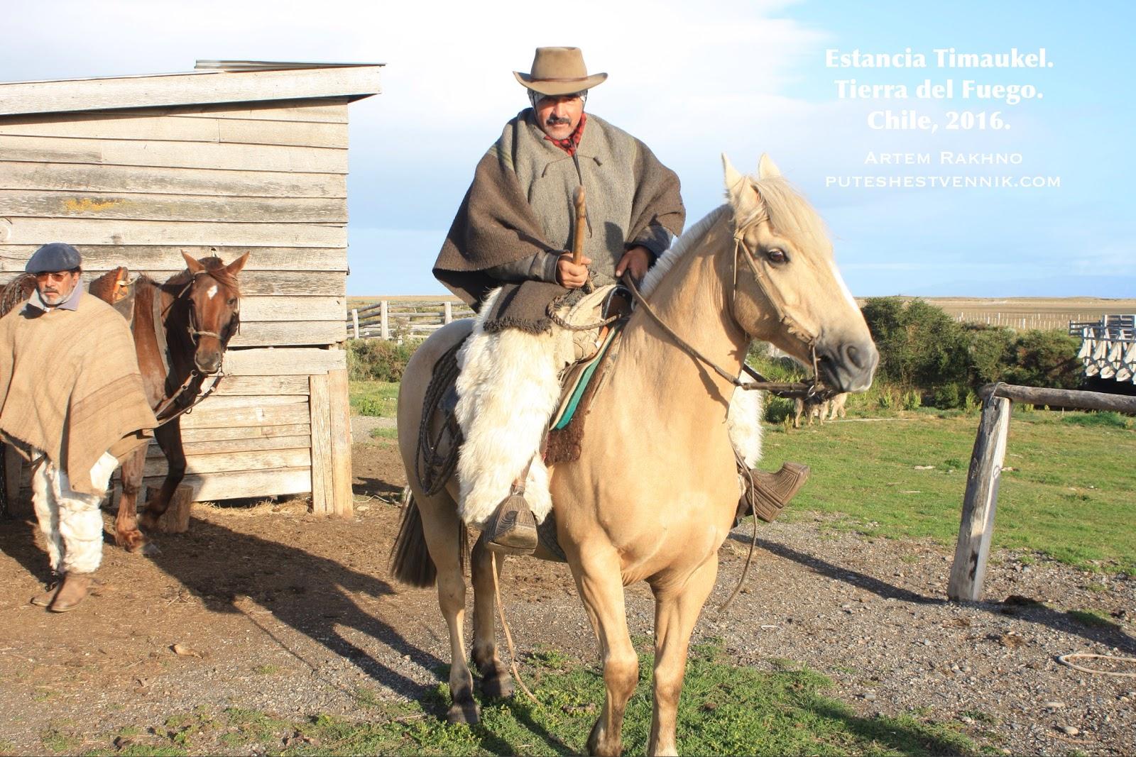 Гаучо верхом на лошади