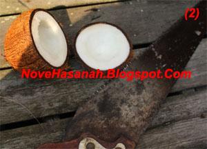 langkah-langkah dan cara membuat kerajinan tangan wadah multigunan dari batok (tempurung) kelapa yang sangat mudah untuk anak-anak 2