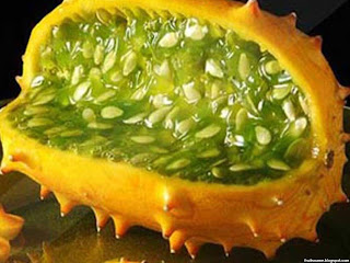 African cucumber fruit images wallpaper