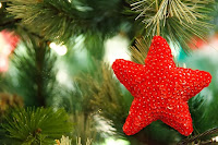 star ornament on tree