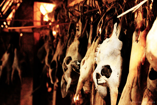 skulls-hunted-longwa-village-mon-nagaland-photo