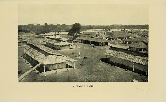 A Plague Camp