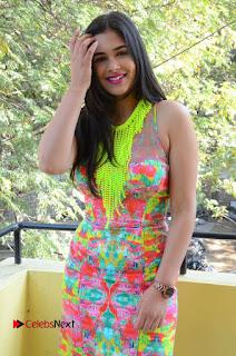 Telugu Actress Prasanna Stills in Short Dress at Inkenti Nuvve Cheppu Press Meet Stills  0094.JPG