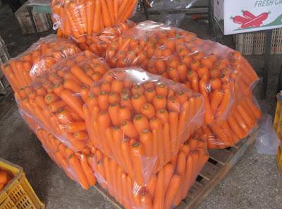 Морковь оптом с поля в сетке - оптовые цена на морковь калиброванная. очищенная в пакетах