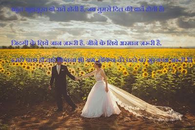 whatsapp web, status love shayari, whatsapp status,new