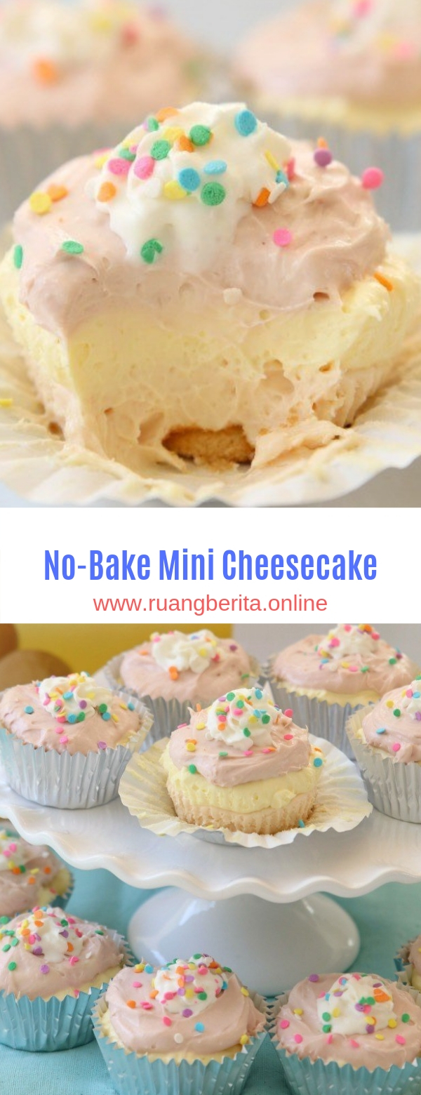 No-Bake Mini Cheesecake