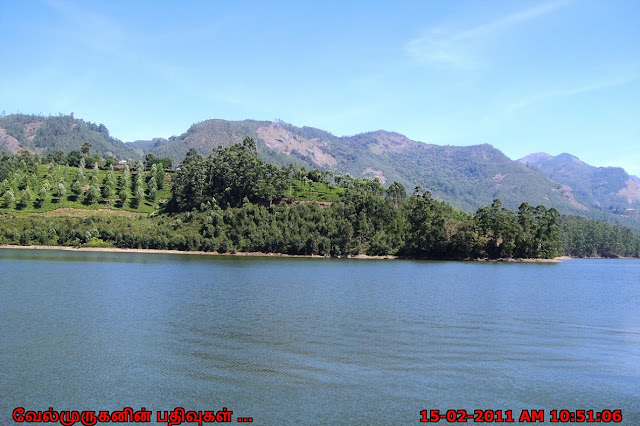 Madupetty Lake Munnar
