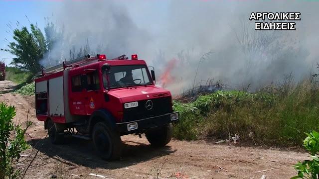 Κινητοποίηση της πυροσβεστικής για πυρκαγιά στη Νέα Κίο