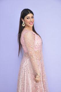 Actress Aditi Singh Latest Stills in Designer Dress at Guppedantha Prema Pressmeet 0019.jpg