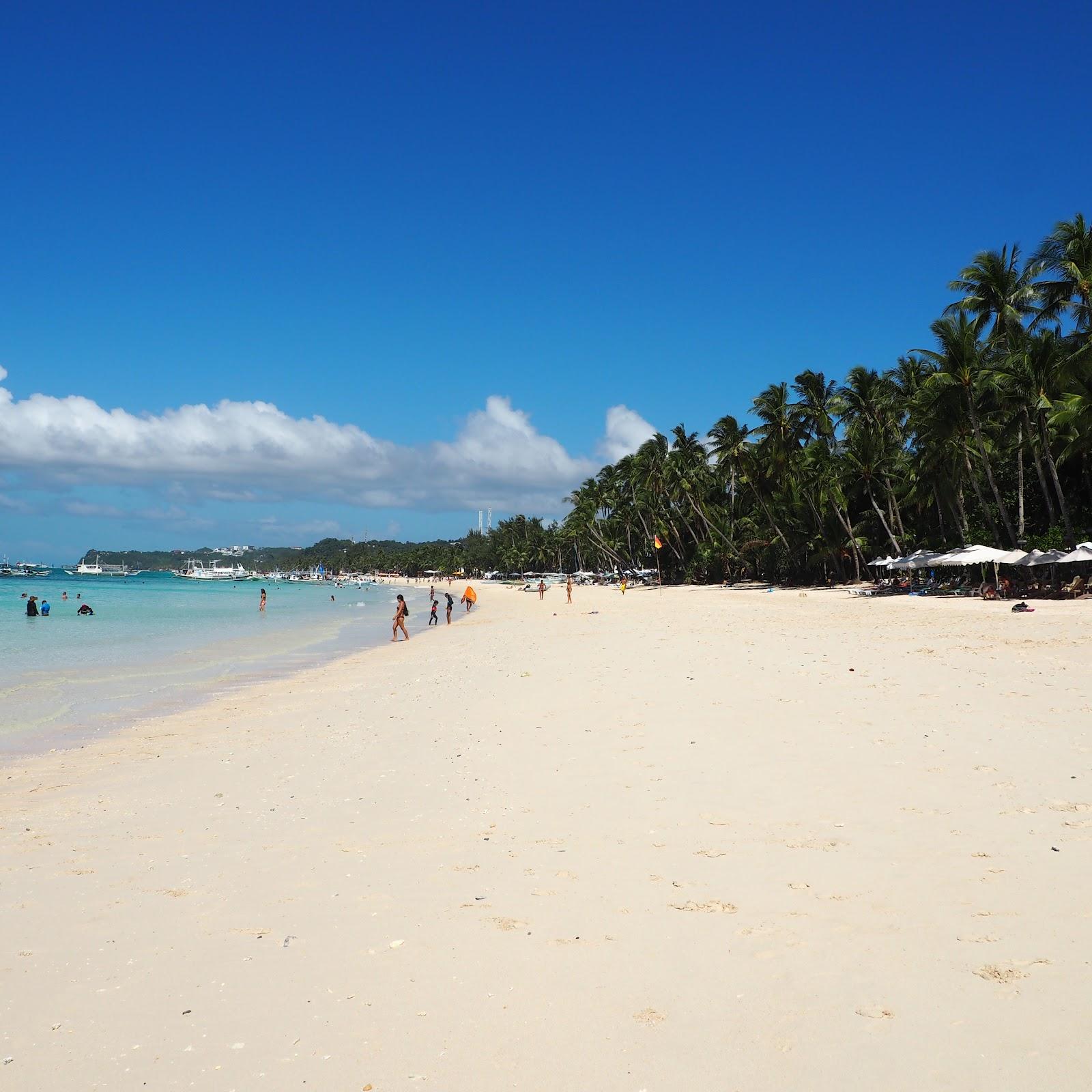 White Beach Boracay Kalanchoe